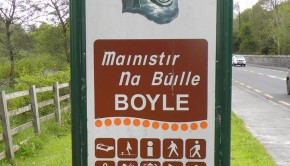 boyle ent