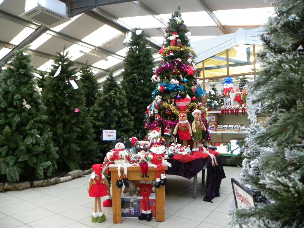 Garden Centre: Christmas In Ardcarne Garden Centre – Boyle Today