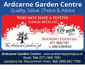 Ardcarne Christmas Garden Cafe