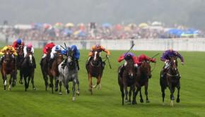 Roscommon-Races