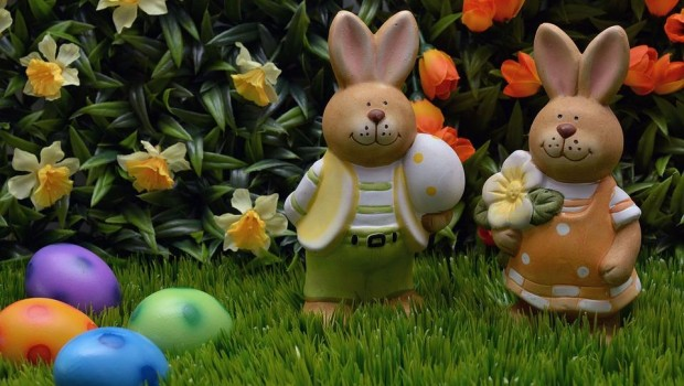 easter-bunny-1232926_960_720