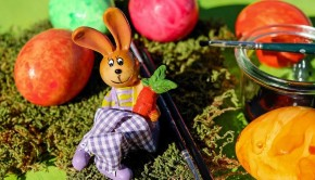 easter-bunny-2098817_960_720