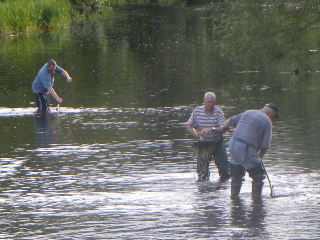 Photo of Boyle river clean up Thursday