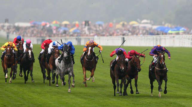 Photo of Sligo Races takes place today