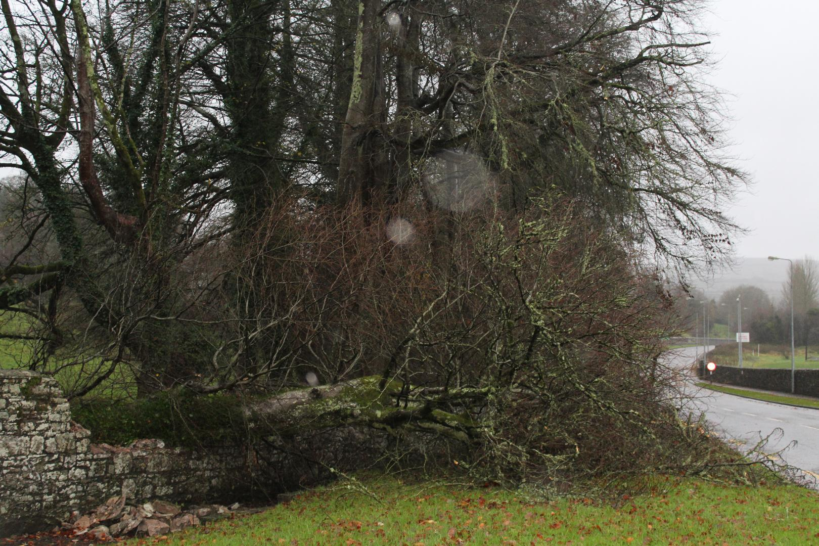 Photo of Storm Henry arrives in Roscommon