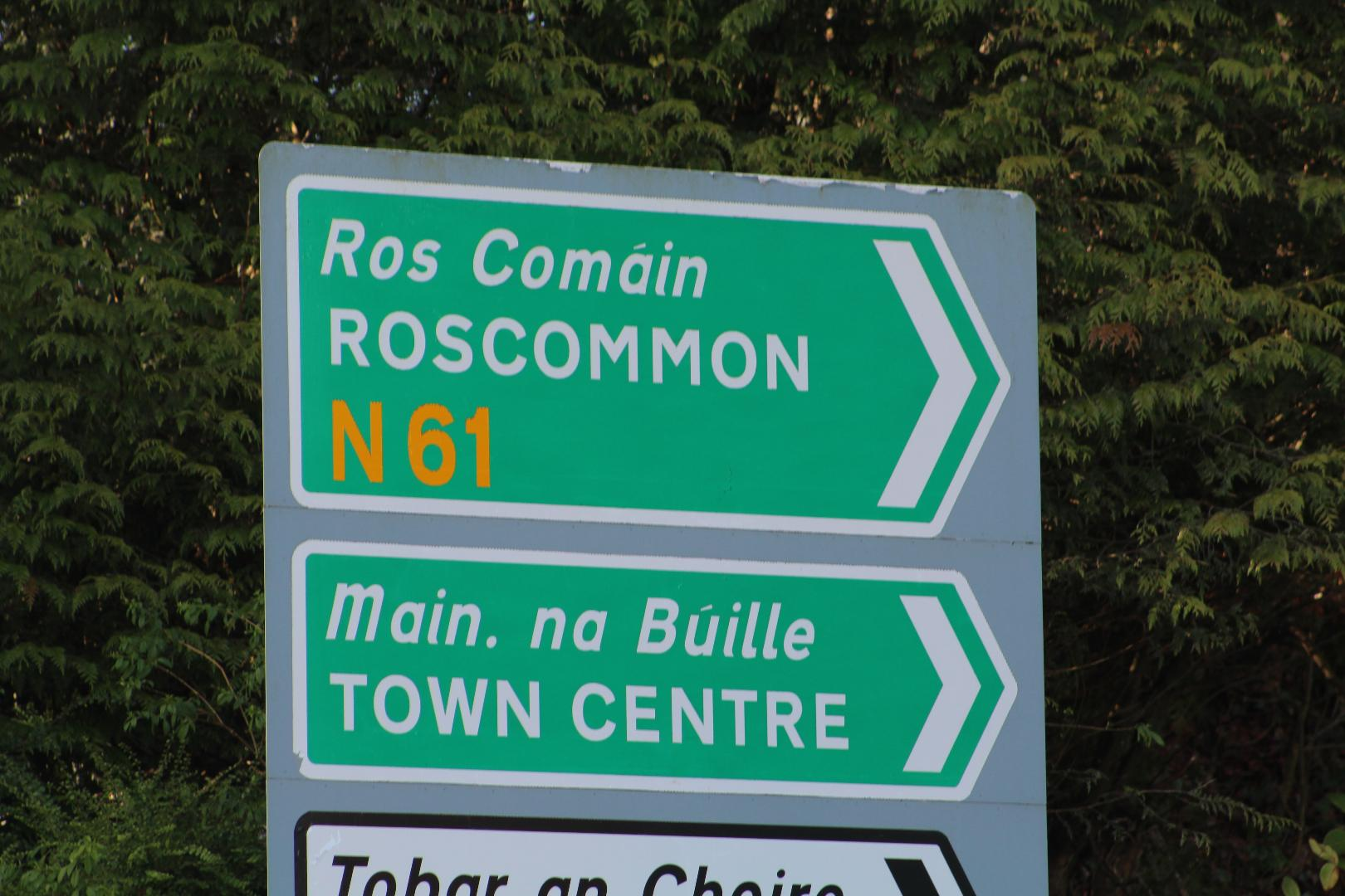 Photo of Two N61 closures in place this week