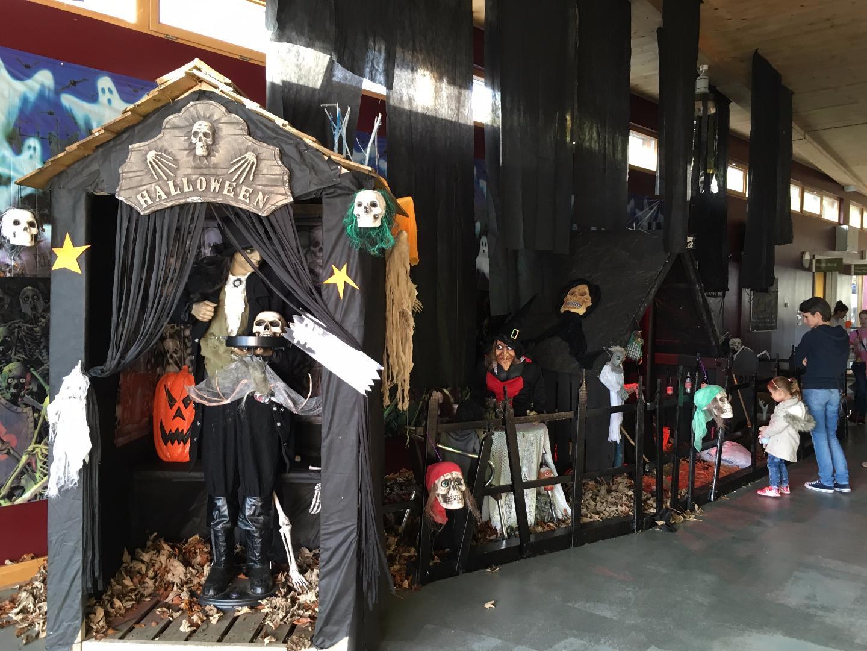 Photo of Halloween activities at Lough Key