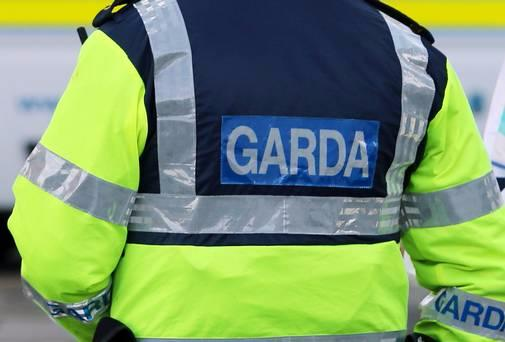Photo of Eleven Garda Reserves in this division