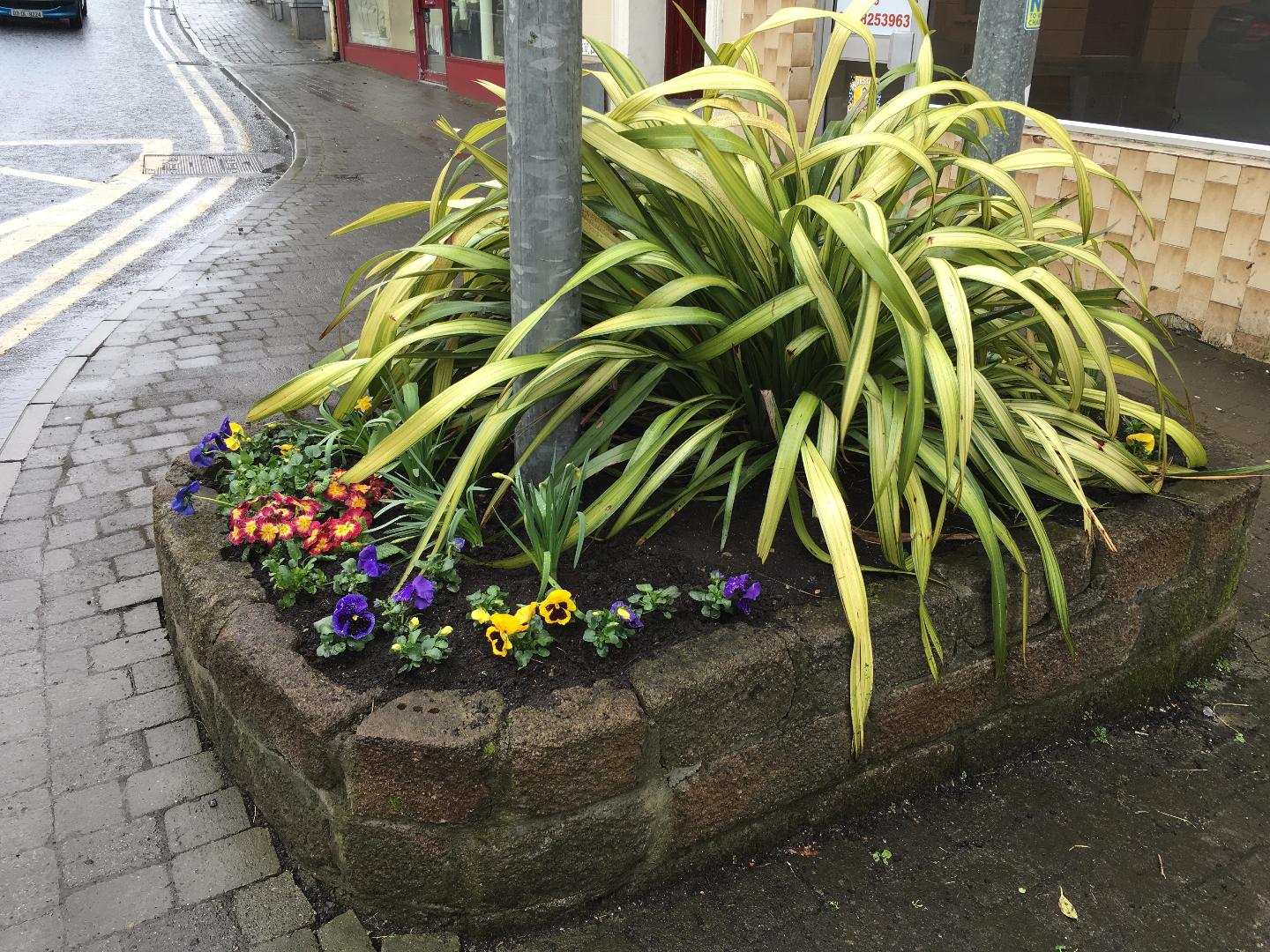 Photo of Tidy Towns meeting on Wednesday