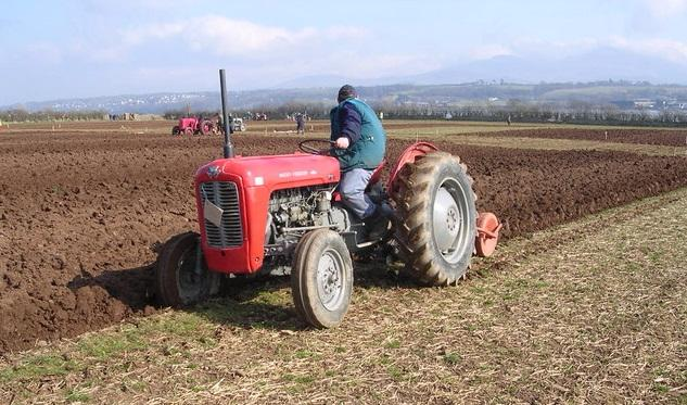 Photo of Roscommon  Ploughing on Sunday