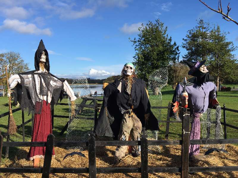 Photo of Halloween at Lough Key Forest Park