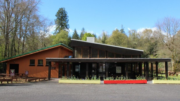 Photo of Lough Key Forest Park Campsite to reopen on July 13th