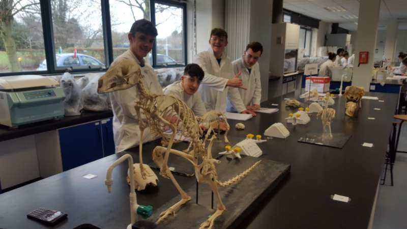 Photo of Students visit Maynooth University
