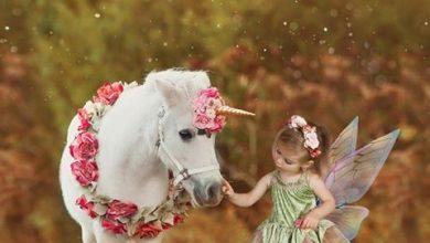 Photo of 'Spring Fairies' photoshoot in Boyle