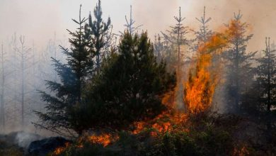 Photo of Fire warning as dry spell continues