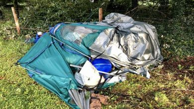 Photo of Camping group have lucky escape in 'Park during Storm